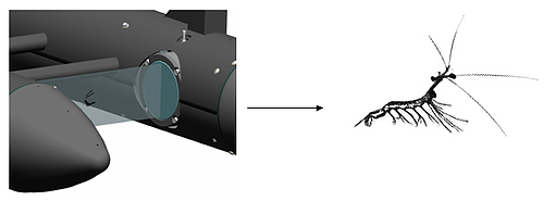 With line-scan cameras, objects are scanned as they flow passed the camera imaging area